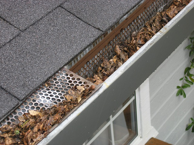 Why Gutter Maintenance Is Important At This Time Of Year