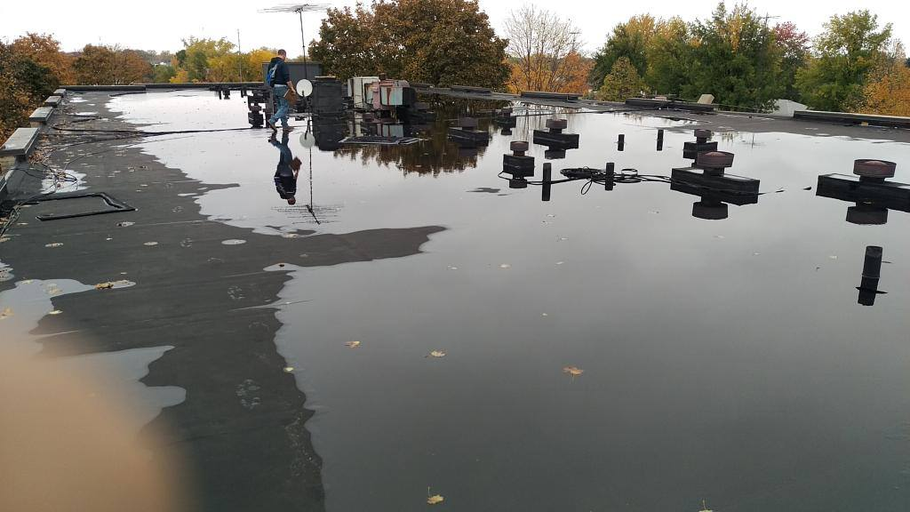 View Larger Image why my flat roof leaking & Why Is My Flat Roof Leaking? - ALTA ROOFING IN SAN DIEGO