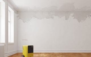 Possible Health Risks from Water Damage