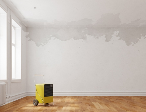 The Possible Health Risks from Water Damage