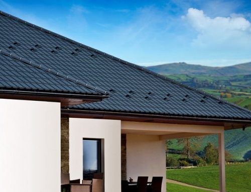 How to Maintain Your Roof Shingles